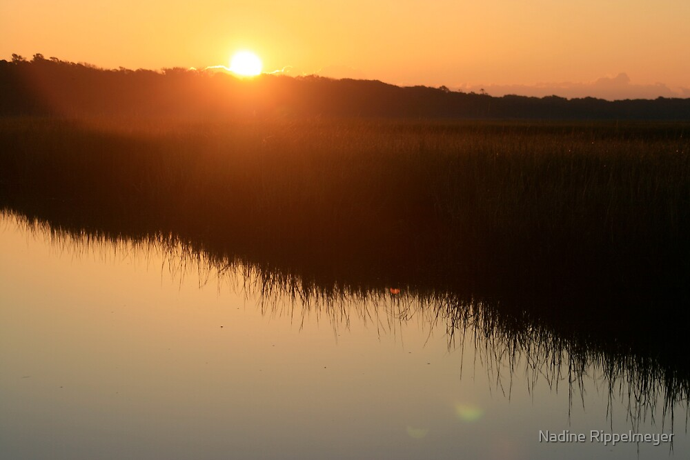 Autumn Sunrise over the Marsh by Nadine Rippelmeyer