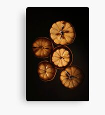 Dehydrated Lemons Canvas Print