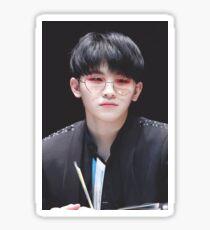 Seventeen - Lee Jihoon - Woozi Sticker