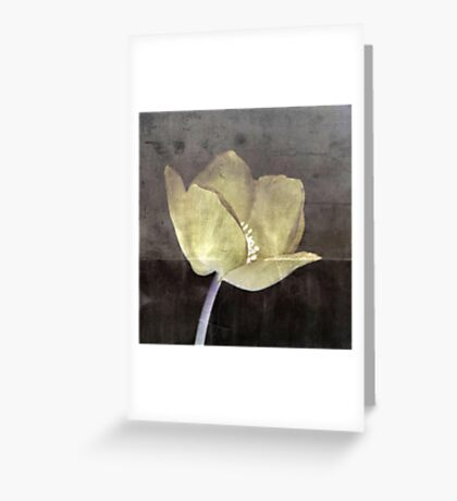Set in Stone Greeting Card