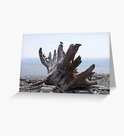 Final Landfall Greeting Card