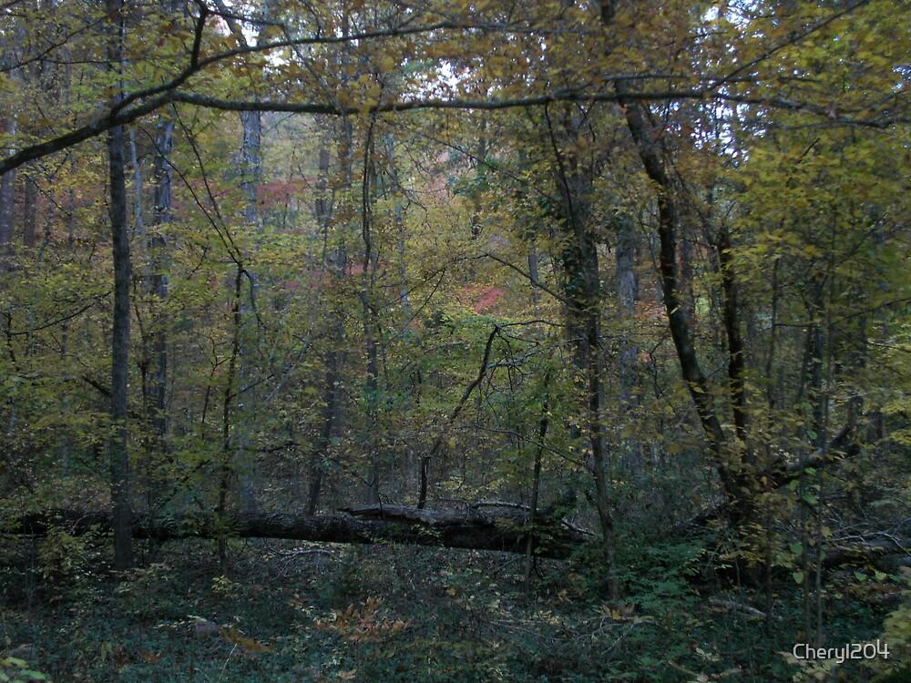 Natural Frame by Cheryl204