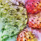 Colorful Cactus Fruit - Digital Watercolor by ibadishi