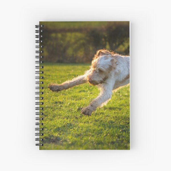 Playtime Spinone Spiral Notebook