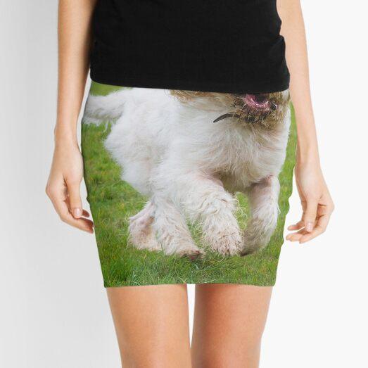 Orange and White Italian Spinone Dog in Action Mini Skirt