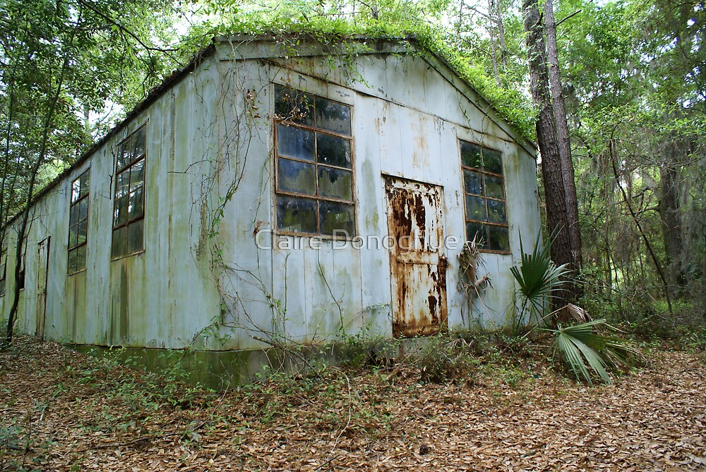 Tin Roof... Rusted. by Claire Donoghue