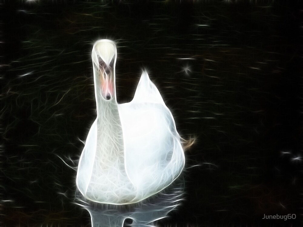 The Swan by Junebug60