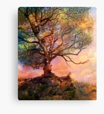 Sunset at Fox Mountain Metal Print