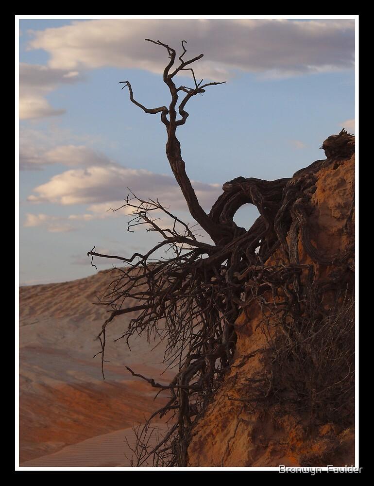 Natures Art by Bronwyn  Faulder