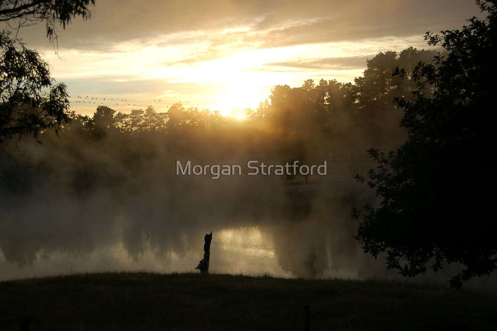 Beautiful Sunrise by Morgan Stratford