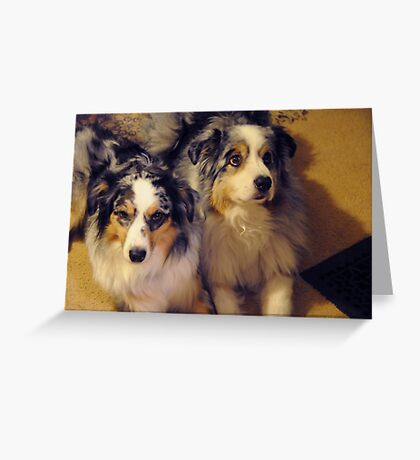 Mellie and Icey Greeting Card