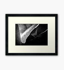 Web Design Framed Print