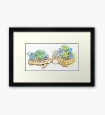 Tortoises with Succulents Framed Print