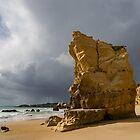 Storm Chasing on the Beach in Algarve Portugal by Georgia Mizuleva