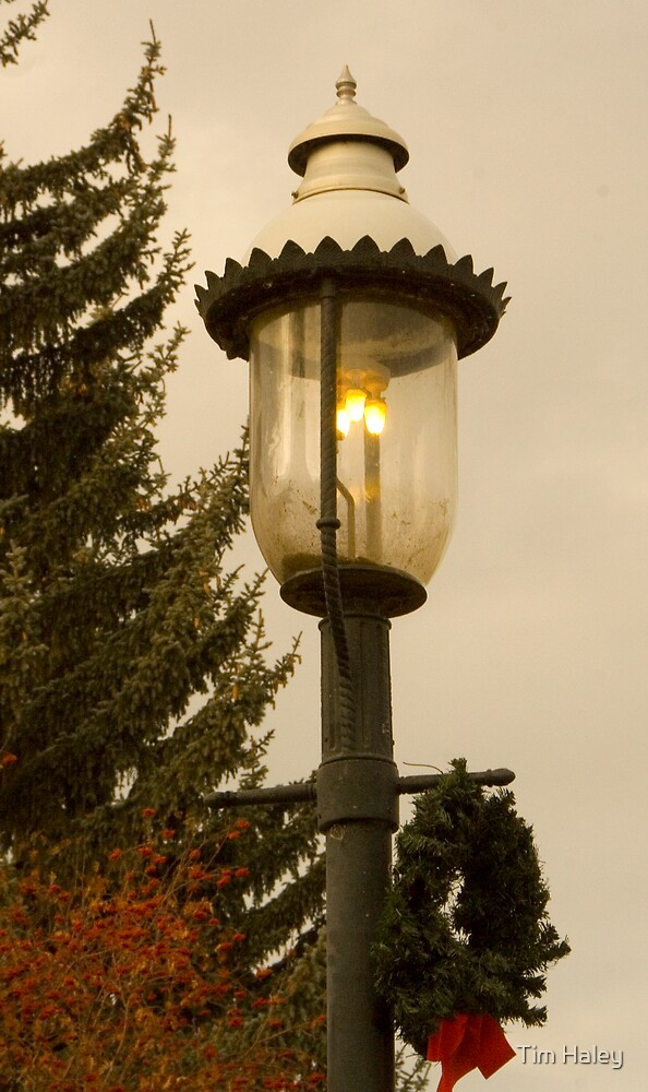 Christmas Lamp Post by Tim Haley
