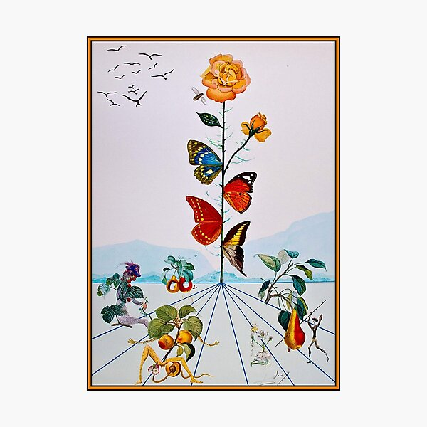BUTTERFLY ROSE : Vintage Abstract Dali Painting Print Photographic Print
