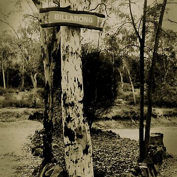 Old Billabong sign. by chany