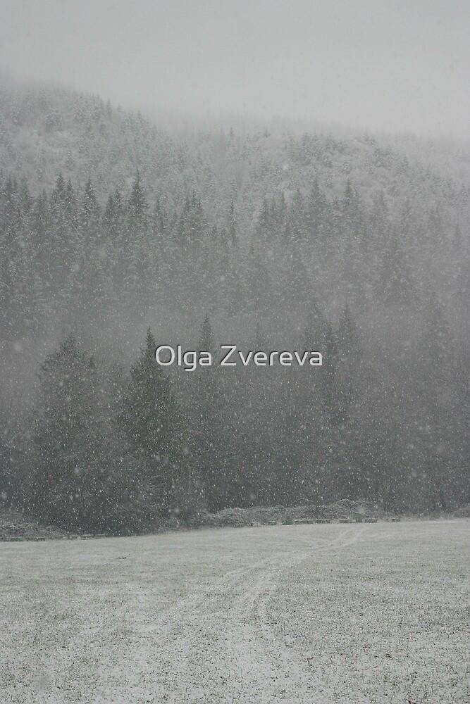 First Snow by Olga Zvereva