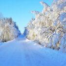 Winter Road #1 by MarianaEwa