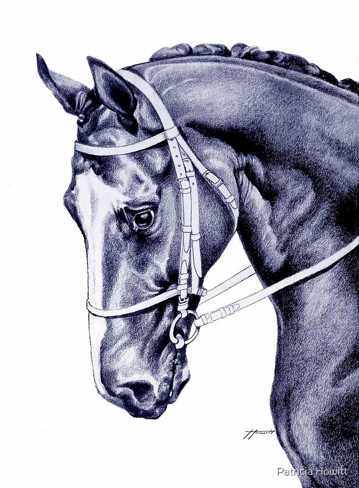 Nureyev (US) - Thoroughbred by Patricia Howitt