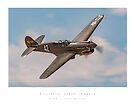 P-40 Warhawk by Kristoffer Glenn Pfalmer