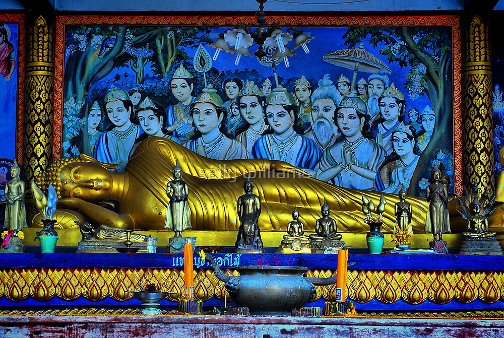 Buddha Reclining by sally williams
