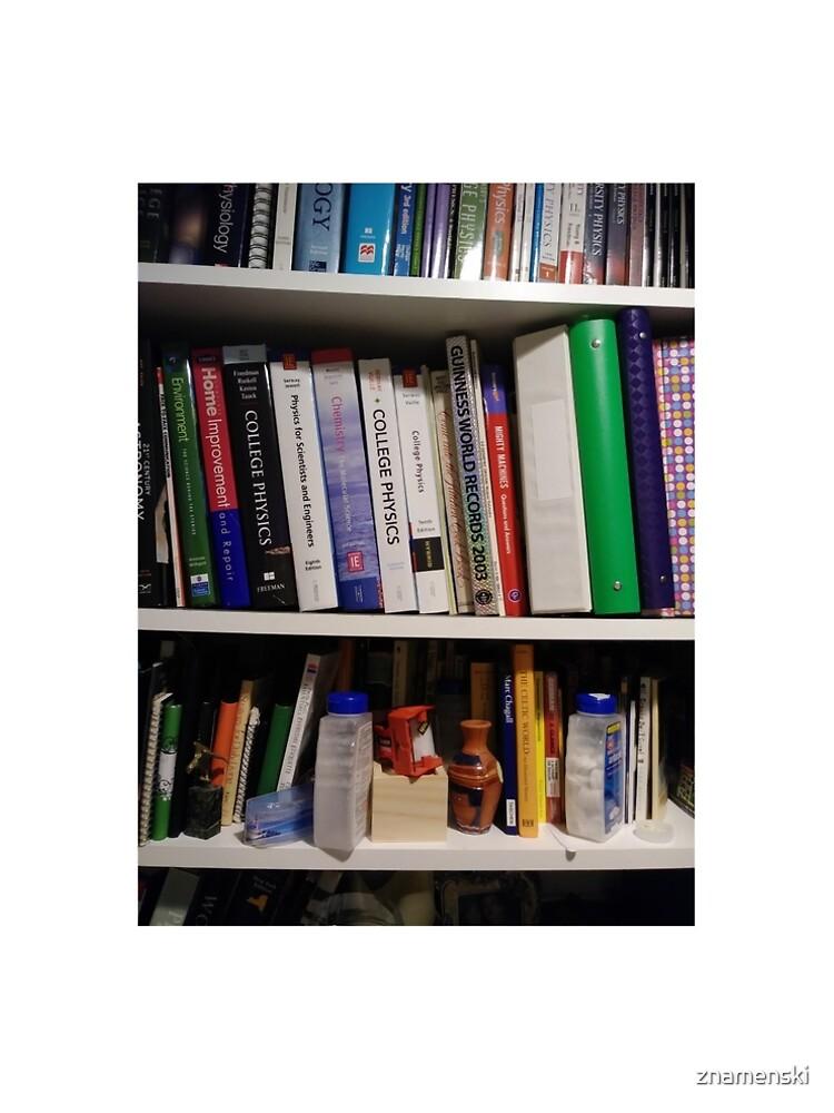 Book Shelves - Книжные полки by znamenski