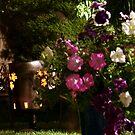 A Beautiful Garden  by Dene Wessling