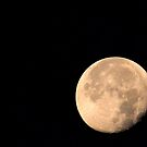 ... crazy about the moon! by RoxysArtShop