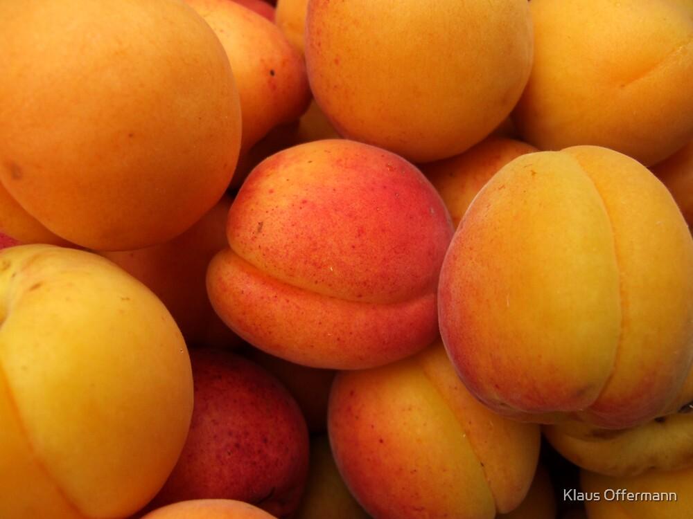 Apricots  by Klaus Offermann