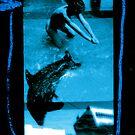 Ella Preggers with Dolphin by Mario  Scattoloni