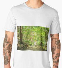 Forest trees background. Men's Premium T-Shirt
