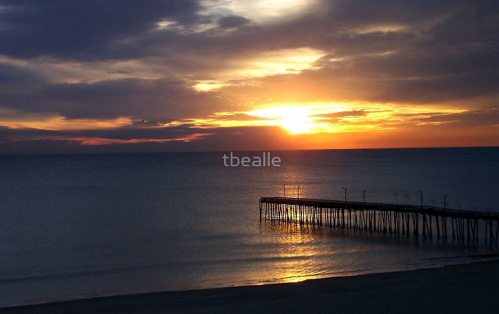 Hope on the Horizon by Terri~Lynn Bealle