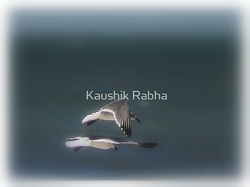 Dream Flight by Kaushik Rabha