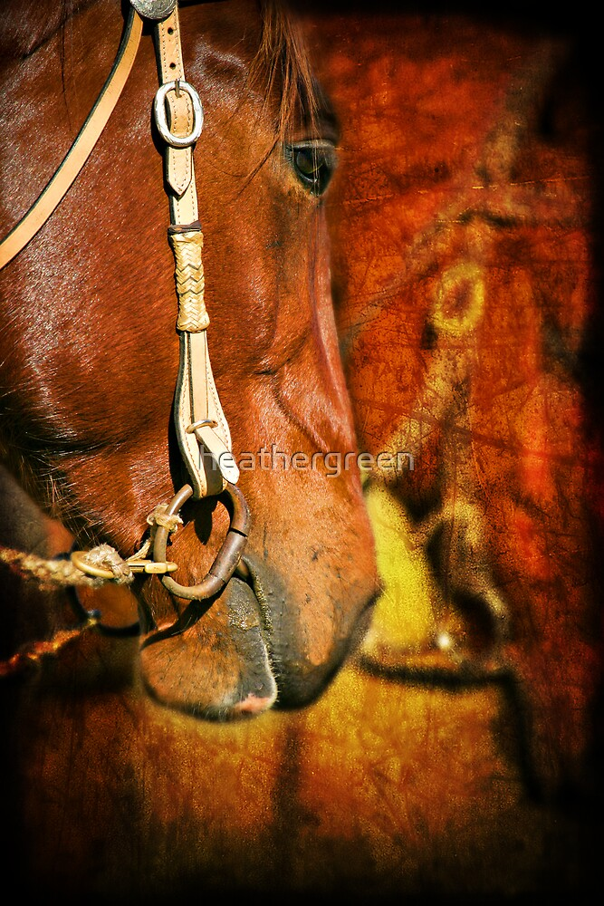 Cow Horse by heathergreen