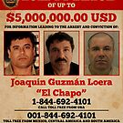 El Chapo wanted  by pornflakes