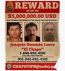El Chapo wollte Poster