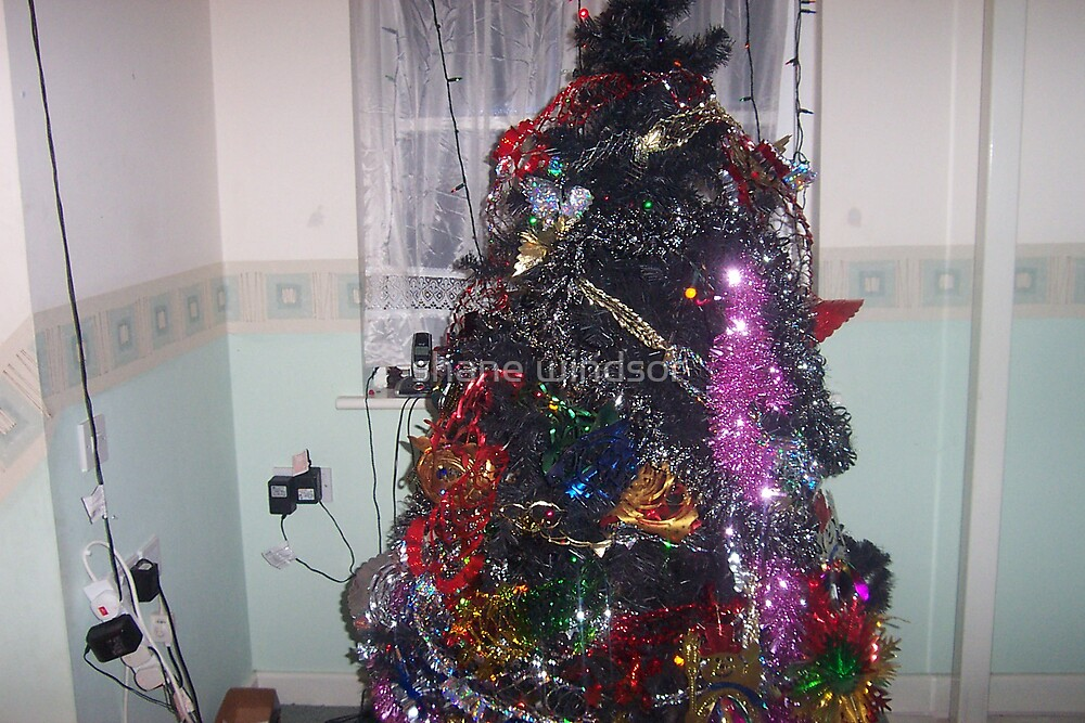 over crowded christmas tree by shane windsor