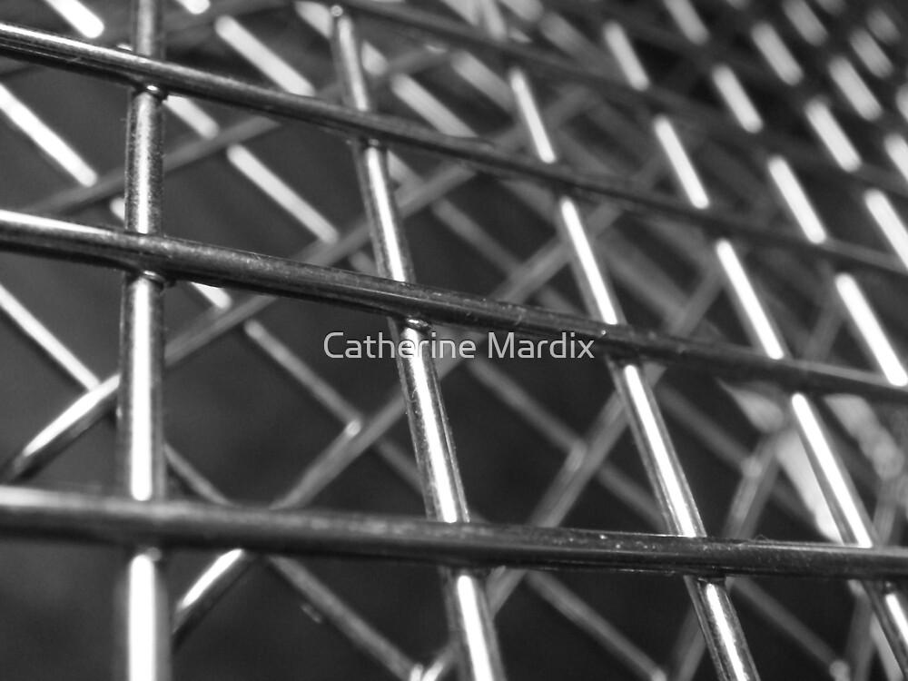 Basket Case by Catherine Mardix