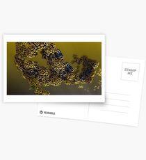 Alien pollen Postcards