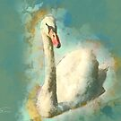 Avon Swan by Mark Salmon
