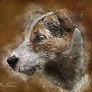 Vintage Jack Russell by Mark Salmon