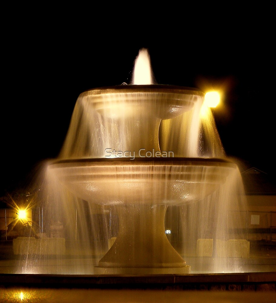 NIGHT FOUNTAIN 2 by Stacy Colean
