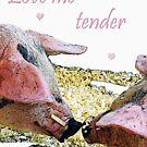 Love me tender (Pigs's Kiss) by Monica Di Carlo