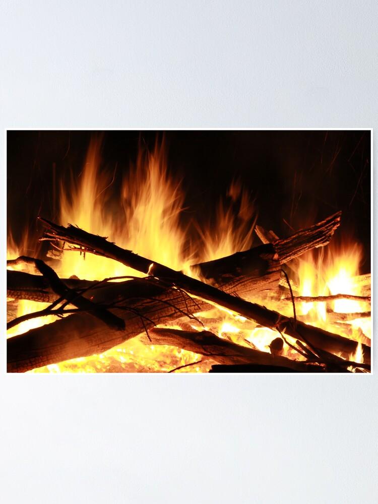 Alternate view of Burn Poster
