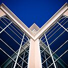 Symmetry: Blue Reflection by Kory Trapane