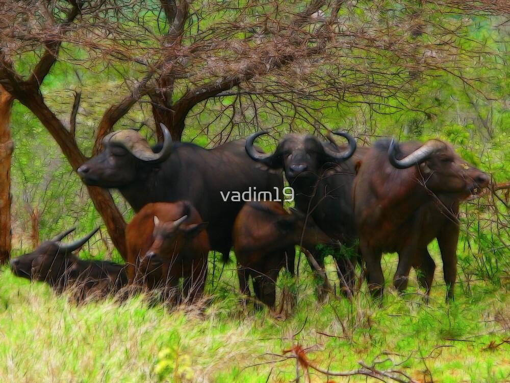 Family Portrait, Kruger National Park, South Africa by vadim19