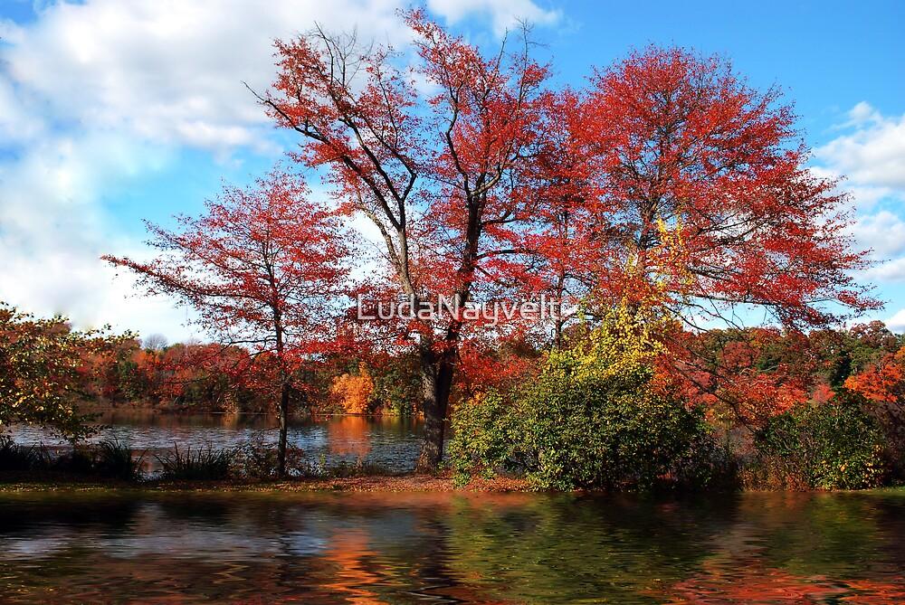 Wellesley, MA by LudaNayvelt
