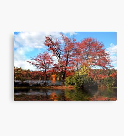Wellesley, MA Metal Print