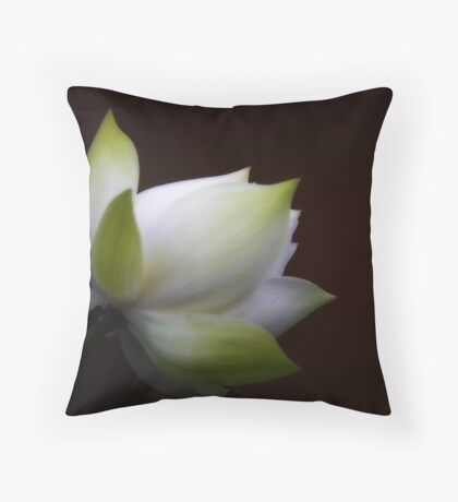 Chasteness Throw Pillow